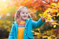Barn i fallpark Unge med höstsidor Arkivfoton