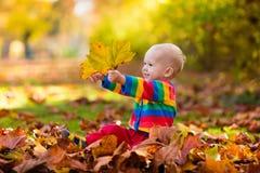 Barn i fallpark Unge med höstsidor Arkivbilder