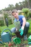 Barn i grönsakträdgård 库存照片