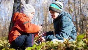 Barn i höst parkerar att ha gyckel som spelar med sidorna, går i den nya luften Hösten landskap Ett härligt sceniskt lager videofilmer
