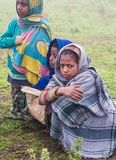 Barn i Semien berg, Etiopien Royaltyfri Fotografi