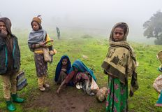 Barn i Semien berg, Etiopien Fotografering för Bildbyråer