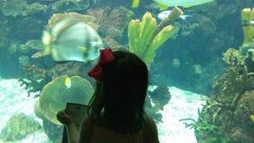 Barn i vördnad av akvariet Royaltyfri Foto