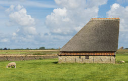 Barn on the island of Texel Royalty Free Stock Image