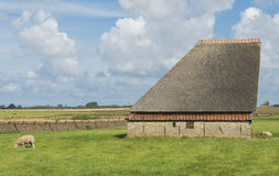 Barn on the island of Texel Royalty Free Stock Photo
