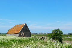 Barn at island Texel Stock Photography