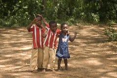Barn Kizimbani, Zanzibar, Tanzania 免版税库存照片