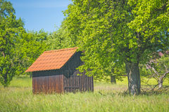 Barn in a meadow Stock Photography