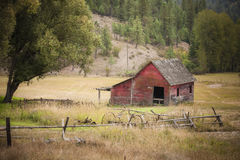 Barn in meadow. Stock Image