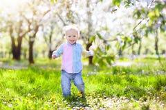 Barn med blomman för körsbärsröd blomning för det easter för bakgrundspojken isolerade den gullig jakten för gräs för ägg ägget n Royaltyfri Bild