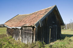 Barn in the moss Royalty Free Stock Photo