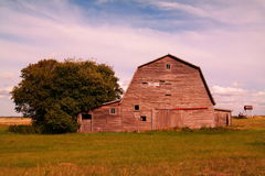 A barn in Noonan Stock Image