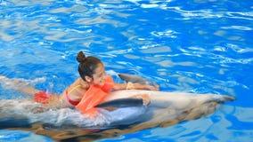 Barn och delfin Den tonåriga flickan simmar med delfin som är hållande på till hans fena lager videofilmer