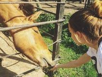 Barn och en häst Royaltyfria Foton