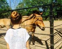 Barn och en häst Royaltyfri Foto