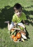 Barn och korg med grönsaker Royaltyfri Bild