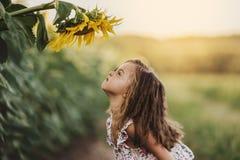 Barn och solros, sommar, natur och gyckel för england för däck för dag för strandbrighton stol blåsig sun för sommar för sjösida  royaltyfri bild