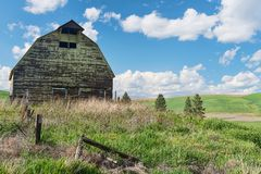 Barn. Old barn and wheat field, Colfax, Washington royalty free stock photography