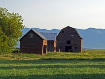 Barn and Outbuildings. This image of the barn and outbuildings with the mountains in the background was taken in NW Montana in the early morning Stock Image