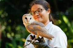 Barn Owl with its Handler. At Jurong Bird Park. Jurong Bird Park is an aviary and tourist attraction in Jurong, Singapore. The bird park, managed by Wildlife royalty free stock photography