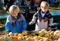 Barn på bönder marknadsför att välja grönsaker royaltyfri foto