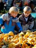 Barn på bönder marknadsför att välja grönsaker vertikalt arkivbild