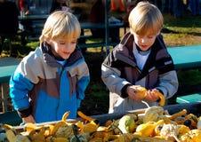 Barn på bönder marknadsför tacksägelse royaltyfria bilder