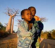 Barn på baobabgränden tidigt på morgonen Royaltyfri Fotografi