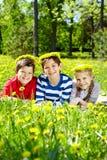 Barn på lawn royaltyfri fotografi