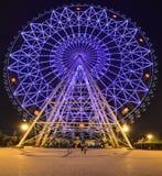 Barn parkerar Ferris Wheel nanning Royaltyfria Bilder