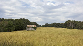 Barn and pasture. An old barn in a pasture Royalty Free Stock Image