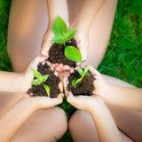 Barn planterar i händer Royaltyfri Bild