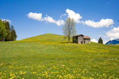 Barn on hill in Prealps Stock Images