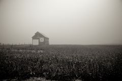 Barn with quilt pattern. Lone barn on a foggy morning Stock Image