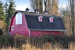 Barn with red wall and black roof Royalty Free Stock Photo