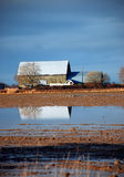 Barn reflected on flooded farm Stock Image