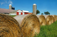 Barn and rolled hay. Farm scene of rolled hay and barn Royalty Free Stock Photography