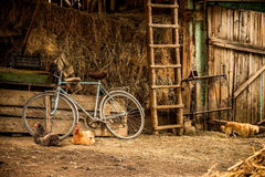 Barn. Scenery in the village barn Stock Photography