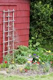 Barn side garden Royalty Free Stock Images