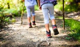 Barn som fotvandrar i berg eller skog med sporten som fotvandrar skor Arkivbilder