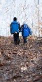 Barn som går i en skog Arkivbilder