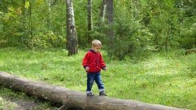 Barn som går i höstpark Pojken går på ett stupat träd Royaltyfri Foto