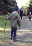 Barn som går i skog Fotografering för Bildbyråer