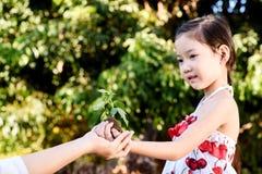 Barn som ger växtplantan royaltyfri foto