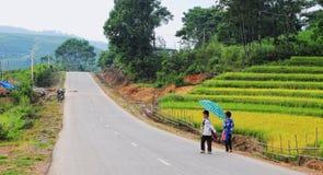 Barn som går på den lantliga vägen med den terrasserade risfältet i Phu Tho, nordliga Vietnam Royaltyfria Bilder