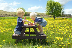 Barn som har fruktpicknicken utanför Arkivbilder