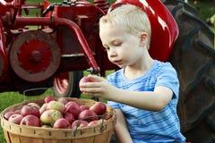 Barn som har rolig äppleplockning och sammanträde på en röd antik trac royaltyfri bild