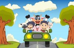 Barn som kör en bil på gatan med illustrationen för ko-, get-, får- och svintecknad filmvektor Arkivfoto