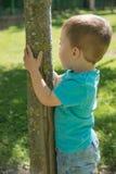 Barn som klamra sig fast intill ett träd Royaltyfri Bild