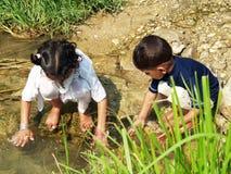 Barn som leker i ström royaltyfri foto
